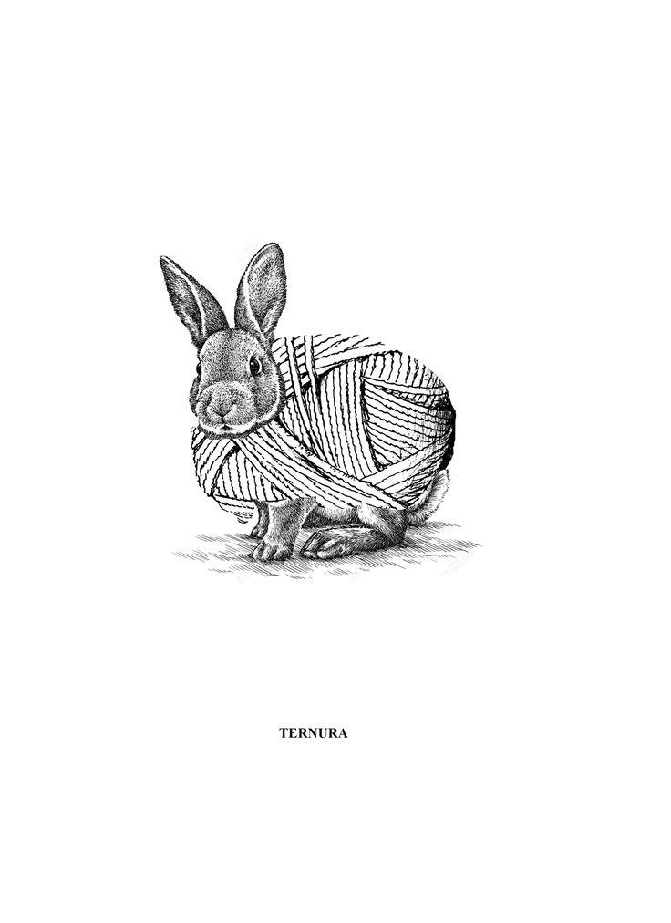 Fusion Conejo - Lana
