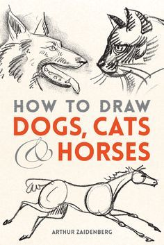 Discover how to create realistic drawings of dogs, cats, and horses with this easy-to-follow guide.
