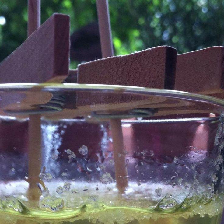 Kandis-Sticks | Thermomix Rezeptwelt