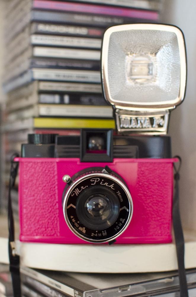 Diana F+ Clone Mr Pink http://lomography.com.au/diana-f-clones/