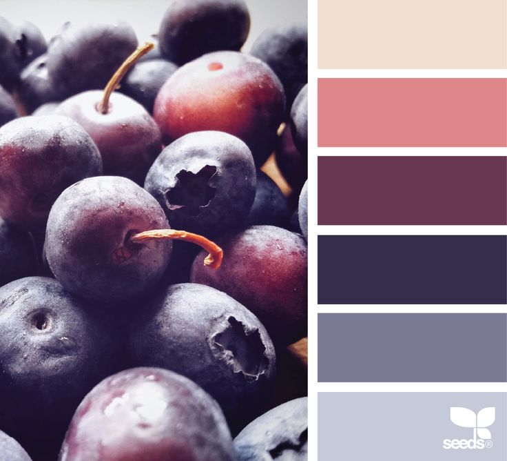 Arden Homes Beaumont 43 Berwick Waters Display Home: 17 Best Ideas About Colour Swatches On Pinterest