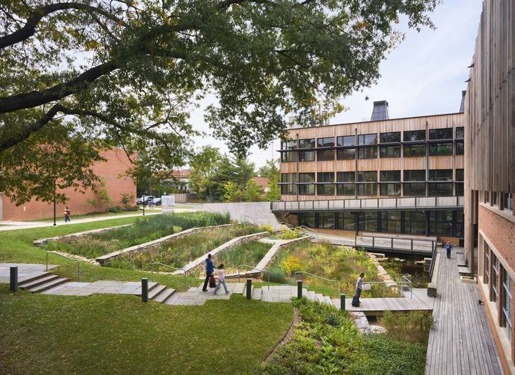 AD Interviews: Kieran Timberlake,Stewart Middle School, Sidwell Friends School, constructed wetland © Albert Vecerka/Esto