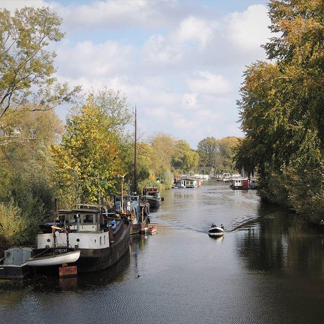 De kracht van (Over)vecht... Wat is zo'n rivier door de wijk toch heerlijk. #Vecht #Utrecht #Overvecht #stadsnatuur