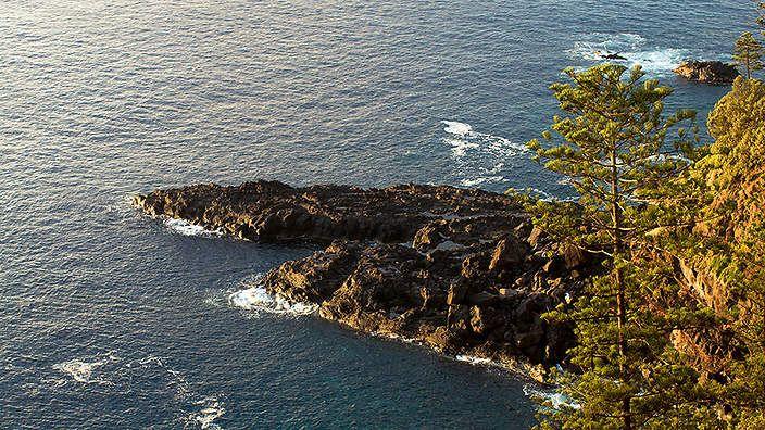 Food of Norfolk Island .... Australia ....
