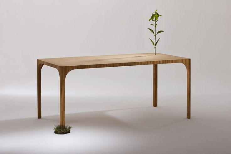 De Barewood is een prachtige design eetkamertafel van het merk Kubikoff. De tafel heeft een zeer mooi design met afgeronde hoeken. De poten zijn in solide berkenhout. Deze eenvoudige maar elegante eetkamertafel van hout geeft een hele mooie uitstraling, het lijkt wel of de tafel op natuurlijk wijze zo gegroeid is, de nerf loopt prachtig over van de poten naar het blad.