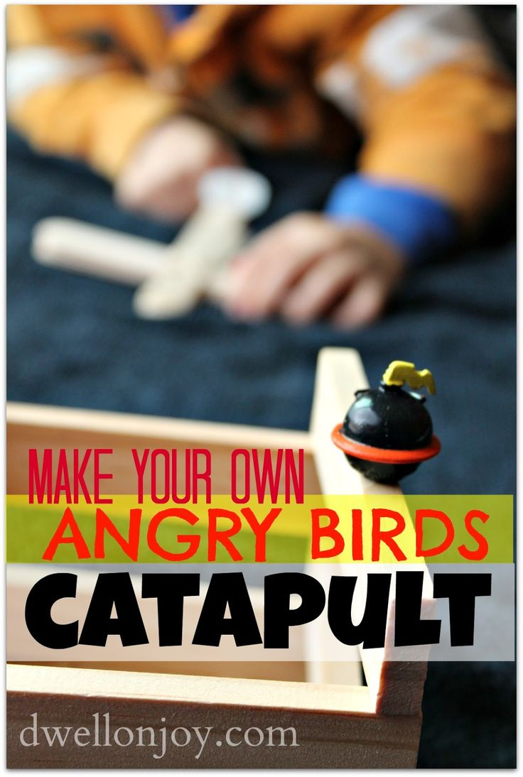 Make+Your+Own+Angry+Birds+Catapult.jpg (1076×1600)