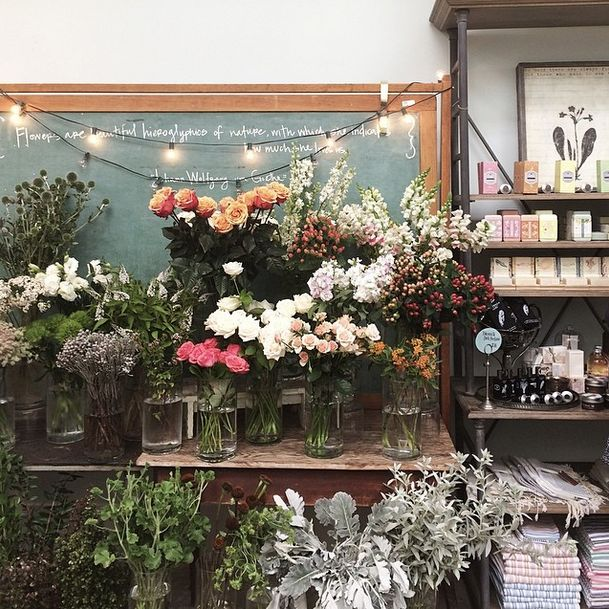 i love flower shops. any place where there are more flowers than people...that gets my vote.