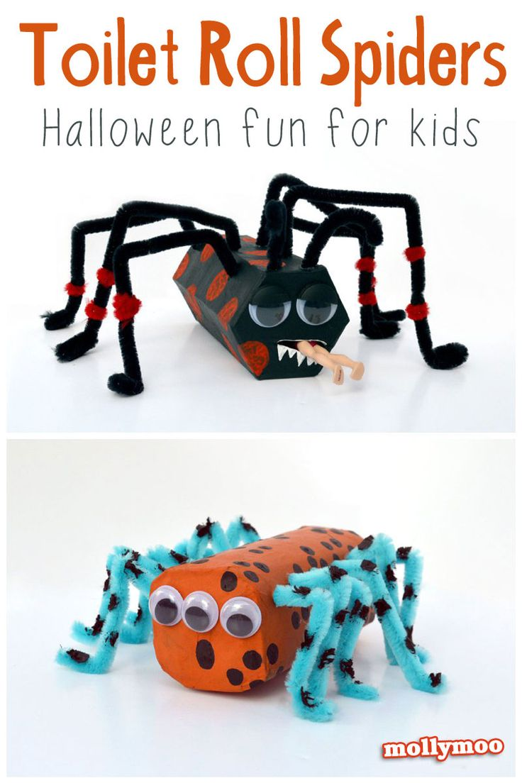 Cardboard & Pipe Cleaner Spiders | MollyMooCrafts For Kids, Toilet Roll Halloween Craft, Pipe Cleaner Halloween Craft, Halloween Toilet Paper Roll, Halloween Crafts Spiders Kids, Cleaners Spiders, Halloween Crafts Pipe Cleaners, Paper Spider, Diy Halloween Crafts Kids