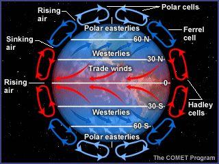 Activity 7 Teacher Guide: Atmospheric Processes - Convection