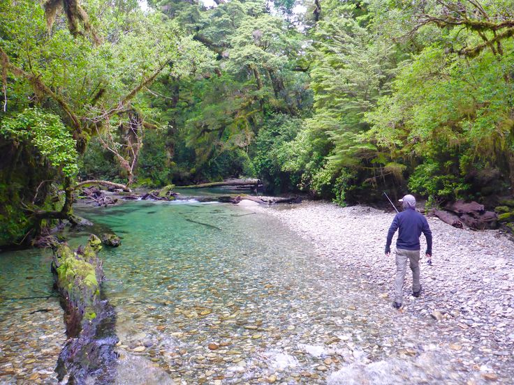 Exploring a wilderness paradise, South Island New Zealand. Remote untouched water is hard to find but rewarding when you do. www.southernriversflyfishing.co.nz