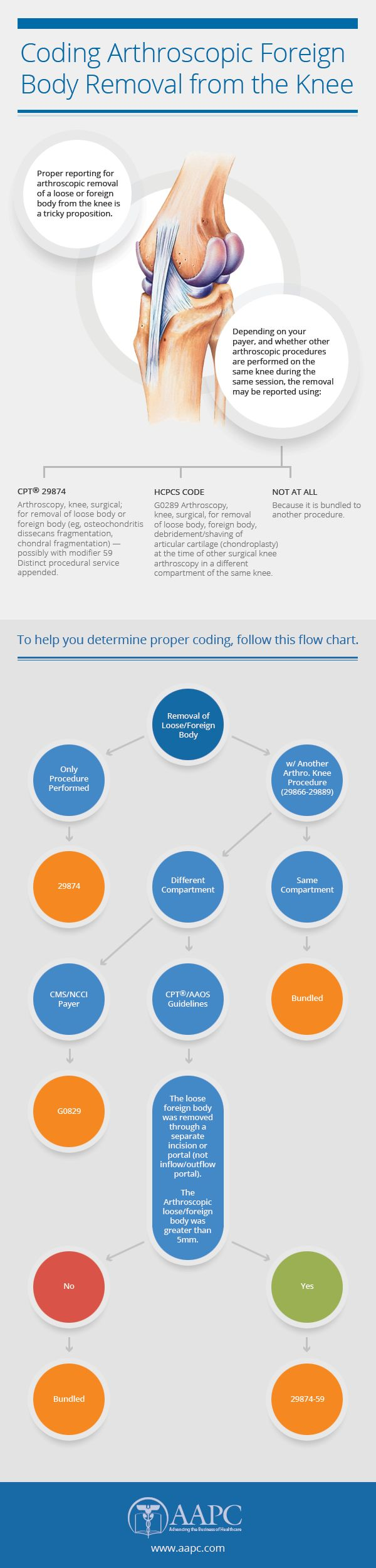 8 best aapc healthcare infographics images on pinterest medicalcoding healthcare medical coding trainingcpt codesicd fandeluxe Images