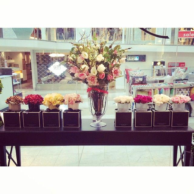 New floral window display at our Doncaster store  floralfriday  cotenoire   flowers  rose. 39 best  cotenoire on Instagram images on Pinterest