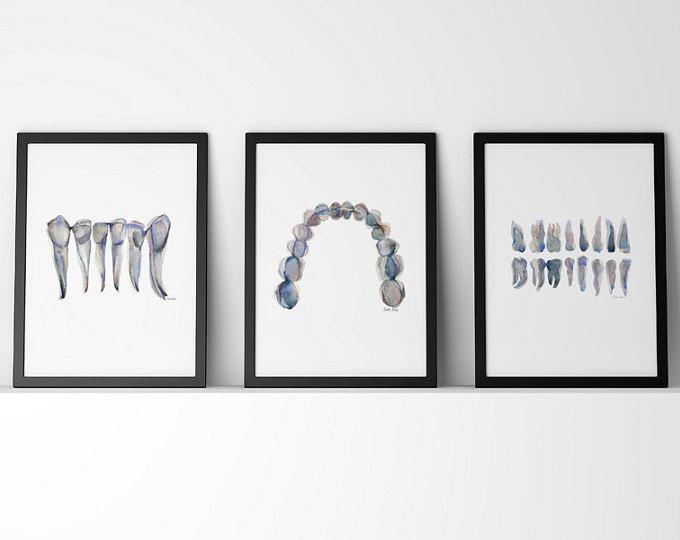 Set of 3 Blue Gray Teeth Print - Dental Art Set - Teeth Watercolor Set - Dentist Anatomy - Dental Office Art