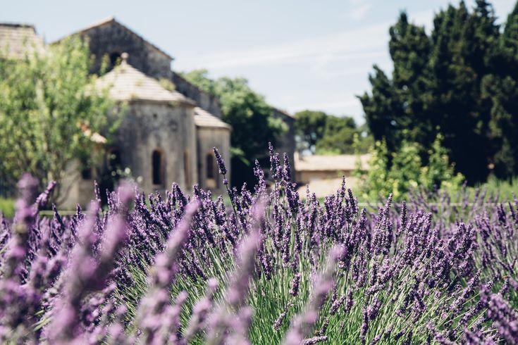 cloitre Saint-Paul de Mausole, Saint Remy de Provence