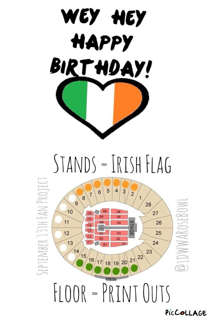 If you are going to the WWA Rosebowl concert on Niall's birthday this is the project!!  HELP SPREAD THE WORD