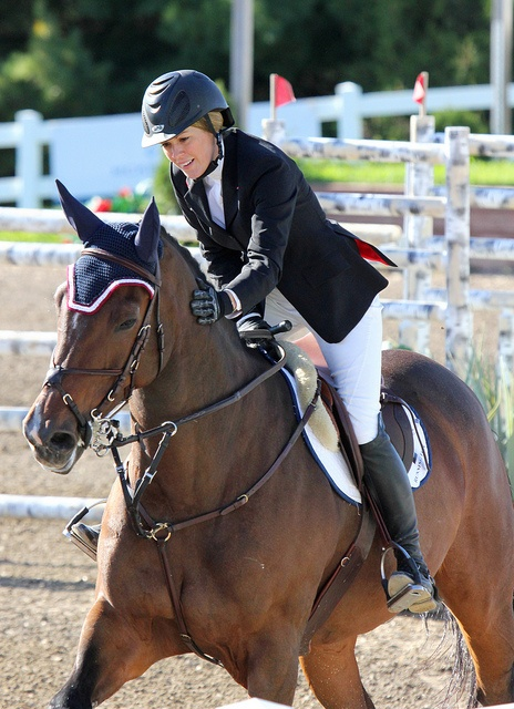 Canadian Show Jumping Tournament, 2012