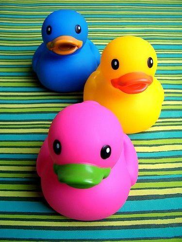 Colorful rubber ducks ...