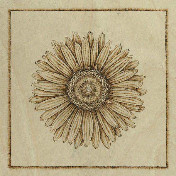 Gerbera Daisy - Pyrography print by Jason Gianfriddo