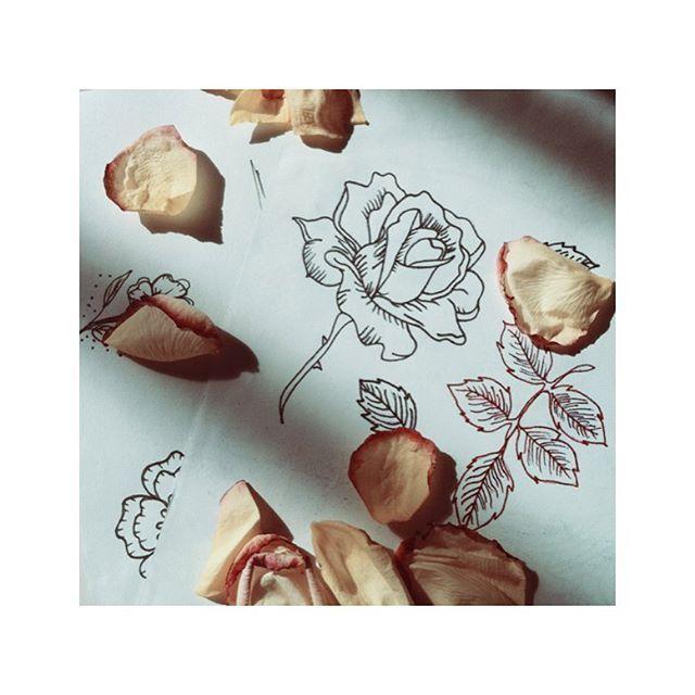 love yourself • #roses #rosetattoodesign #drawingroses #drawing2me #illustration #tattoodrawing #aprentice #aprenticetattoo #unipin #botanical #nature #rosa #goodmorning #teamsaicoltattoo