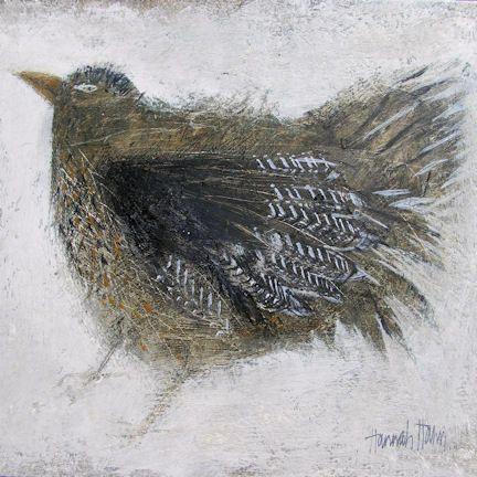 Young Bird, £24.00