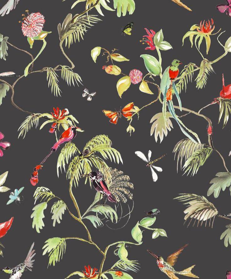Paradijs van vogels behang zwart/ kleur - De kleurrijke vogels vliegen bijna van het behang af, zo echt ziet het eruit. Door de donkere achtergrond ontstaat er een mooi contrast. Zelfs de kleinste details zijn op dit behang goed te zien. Leuk voor in de gang of zitkamer.