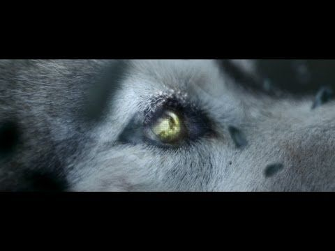 Wolves, Iceland, abstract facets - yes please. David Guetta - She Wolf (Falling To Pieces) ft. Sia. Beautifully shot