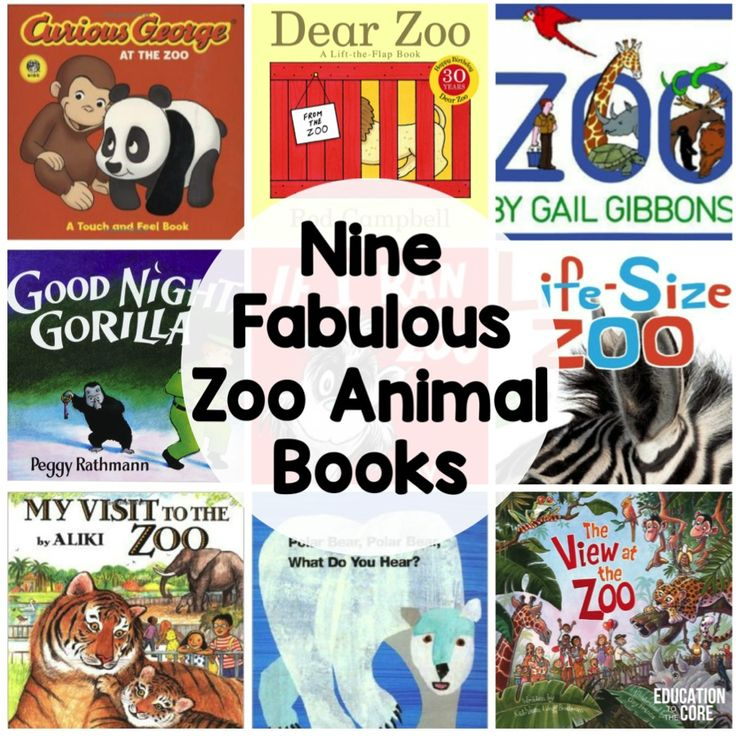 books about the zoo for preschoolers 17 best ideas about zoo animal activities on 406
