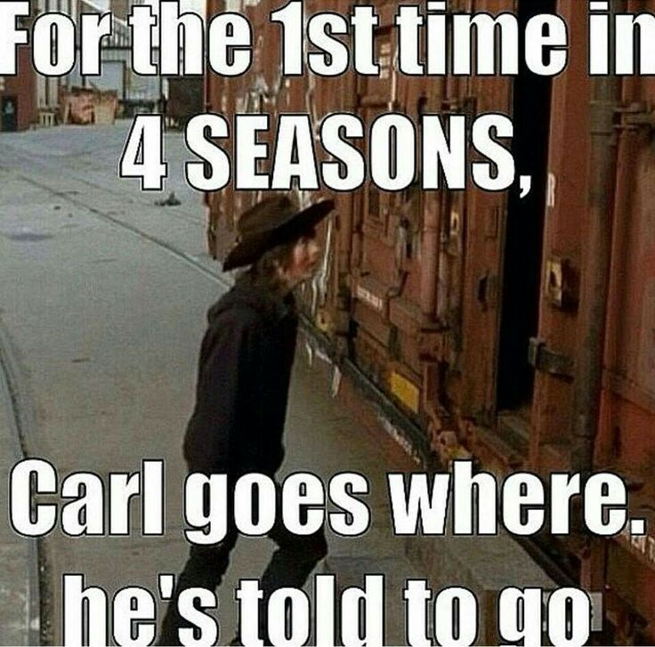 I laughed so hard. The Walking Dead.