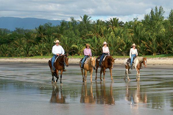Wonga Beach Horse Riding