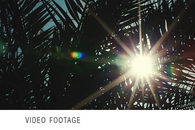 Tropical sun by Grey Coast Media on @creativemarket
