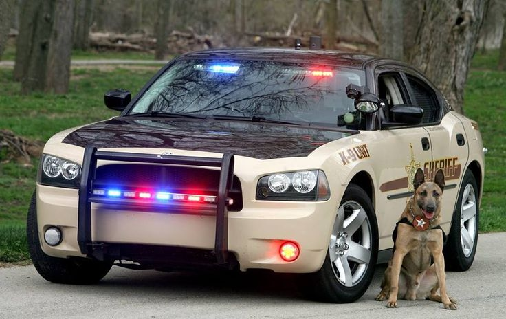 Delaware county sheriffs office indiana police cars