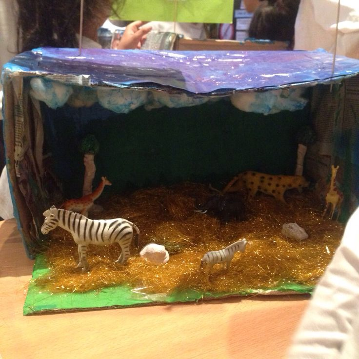 Make Your Own Diorama: 8 Best Making Your Own Miniature Museum Images On
