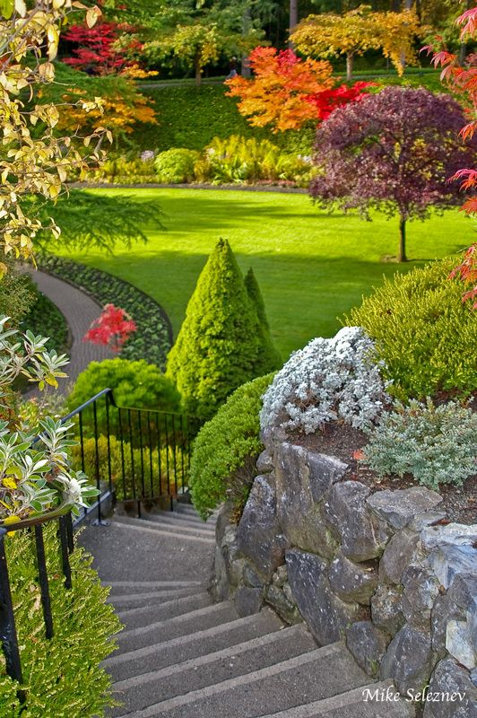 nature   garden   butchart gardens in british columbia   canada