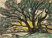Marc-Aurèle Fortin  Arbre (etude), 1901   charcoal and watercolor on paper
