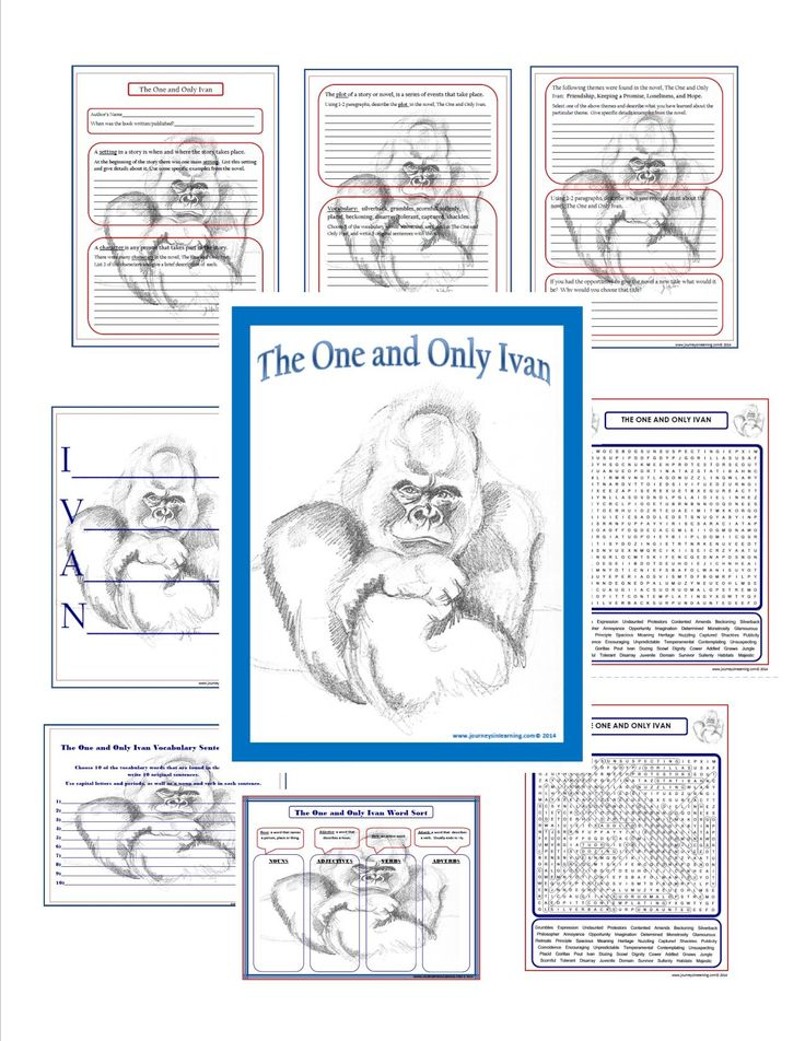 The One and Only Ivan Novel Activities!  Check them out. Click here... https://www.teacherspayteachers.com/Product/The-One-and-Only-Ivan-Novel-Activities-1543569