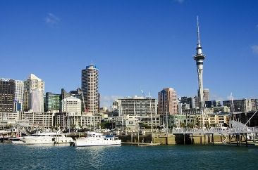 "Before you start exploring this board: Click here to view our FREE ""Auckland Hop-on Hop-off Guide"" and explore New Zealand's City of Sails."
