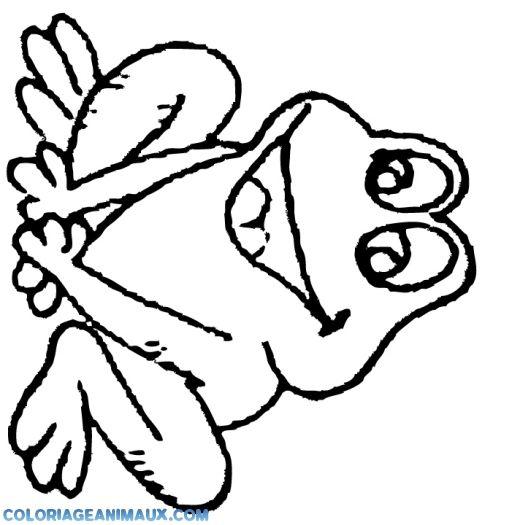 Les 45 meilleures images du tableau grenouille sur pinterest grenouilles animaux et gifs - Coloriage de grenouille ...
