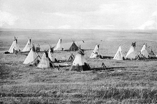 Les Cris (nehiyawak en cri) constituent le peuple autochtone qui compte le plus de membres et qui est distribué sur la zone la plus vaste au Canada.