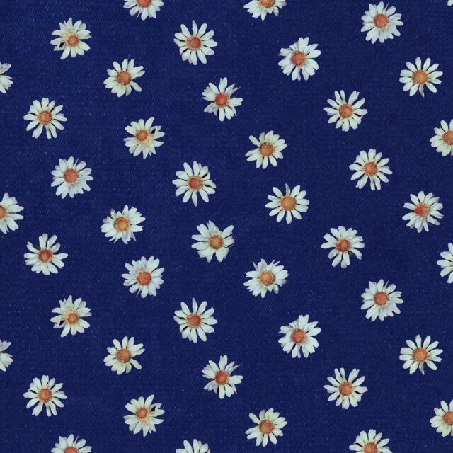Navy blue background white daisies print | Prints ...
