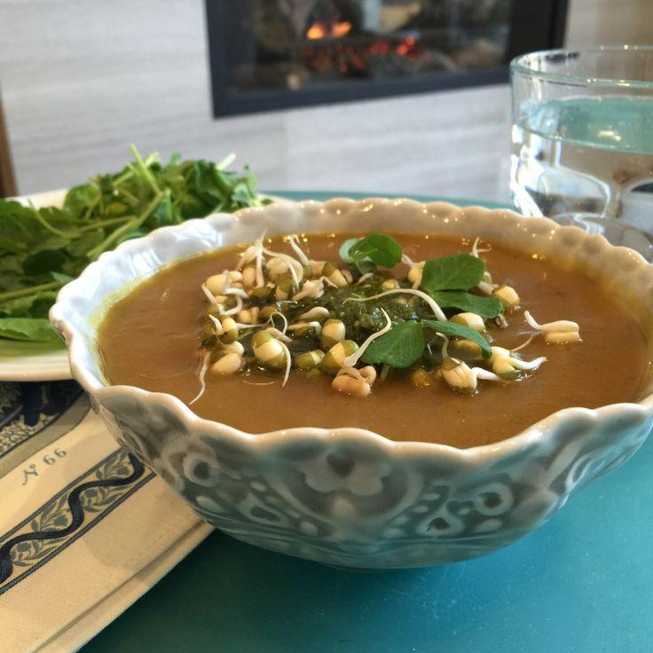 Best soup EVER!  Leek and Potato soup YUM!