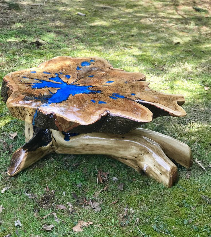 Root Table, Stump Table, Live Edge Table, Live Edge Coffee Table, Root