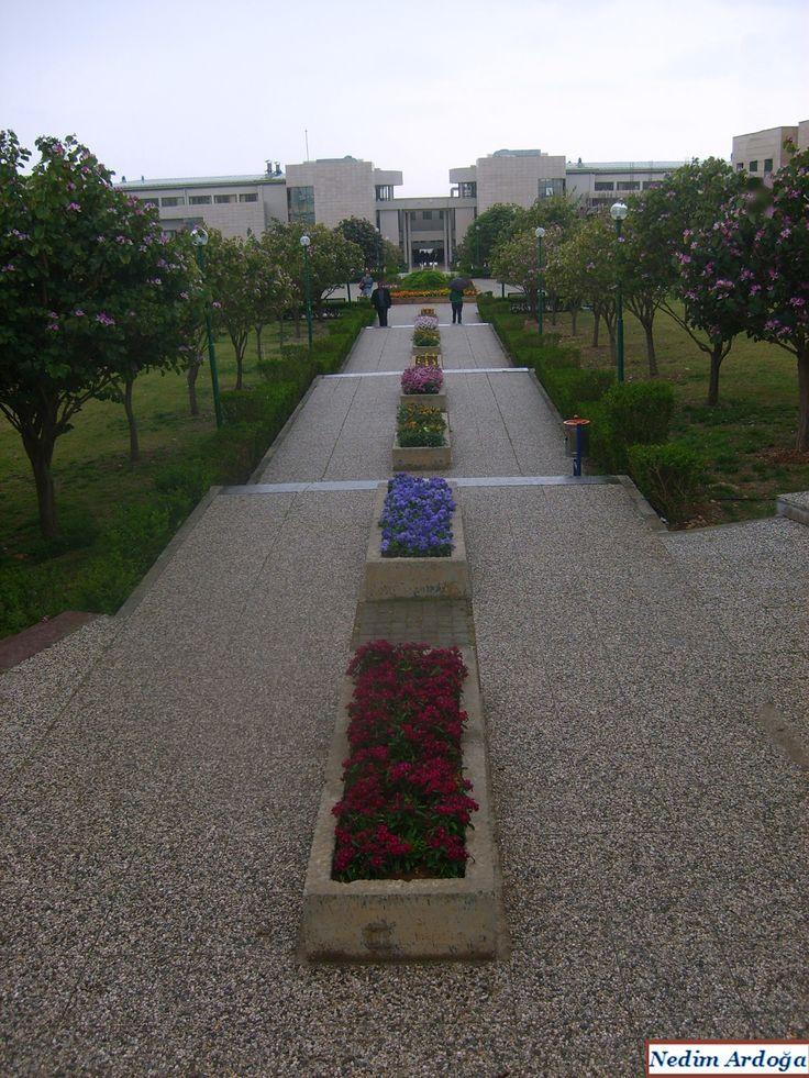 Mersin Universitesi'nden (Mersin University)