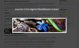 Joomla! eigene Modalboxen nutzen