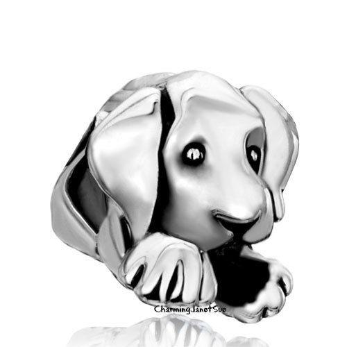 charm pandora cane labrador