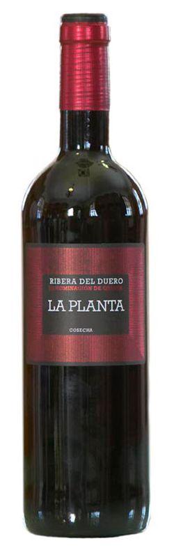 El Vino más Barato: Comprar Arzuaga La Planta 2011
