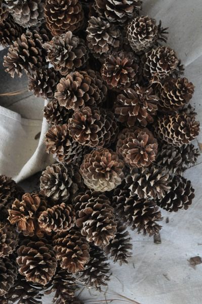 Bungalow Blue Interiors - Home - diy: pine conewreath
