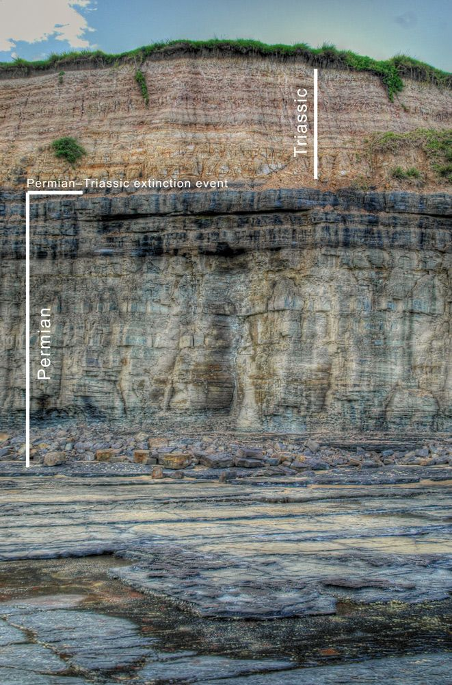 Permian-Triassic Boundary, notorious for being the most devastating extinction event in the planets history (95% of life wiped out in a geological blink). It is located at Austinmer, a coastal suburb between Sydney & Wollongong, Australia