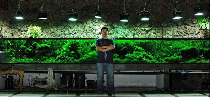 When it Comes to Aquariums, How Big is Too Big? - Okeanos Aquascaping - Building Large, 1000+ Gallon Aquariums