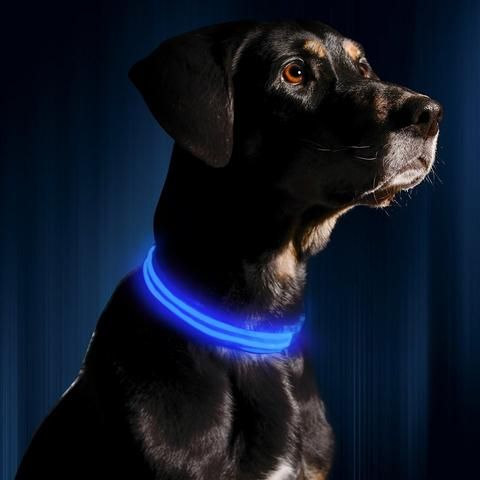 A Must Have For All Dog Owners - Walk Your Dogs With The Safety Of These Trendy LED Collars! Features: LED light glows and flashes in darkness. Bright light ca