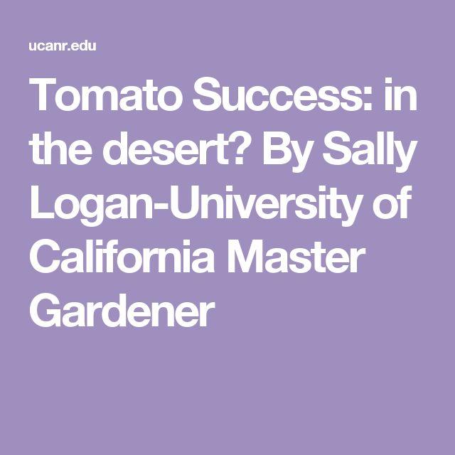 Tomato Success: in the desert? By Sally Logan-University of California Master Gardener